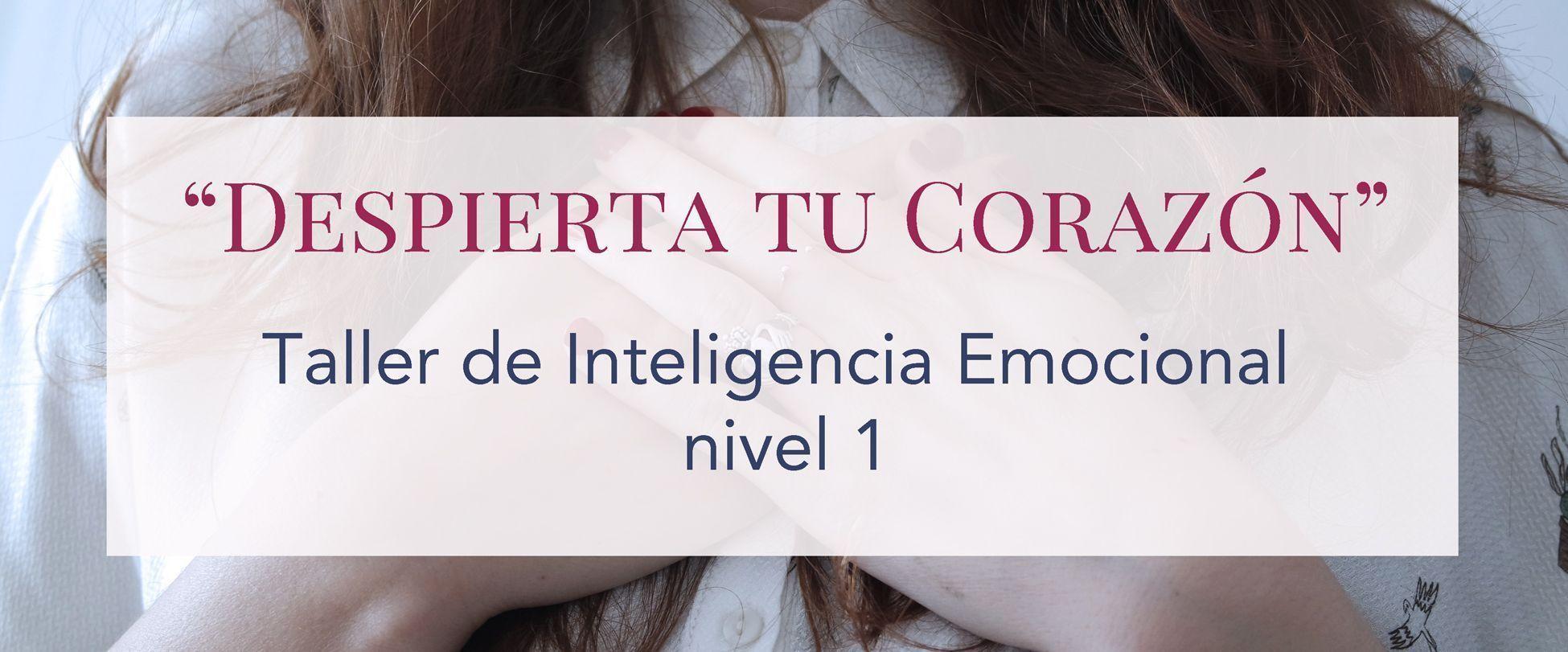 Taller de Inteligencia Emocional Nivel 1