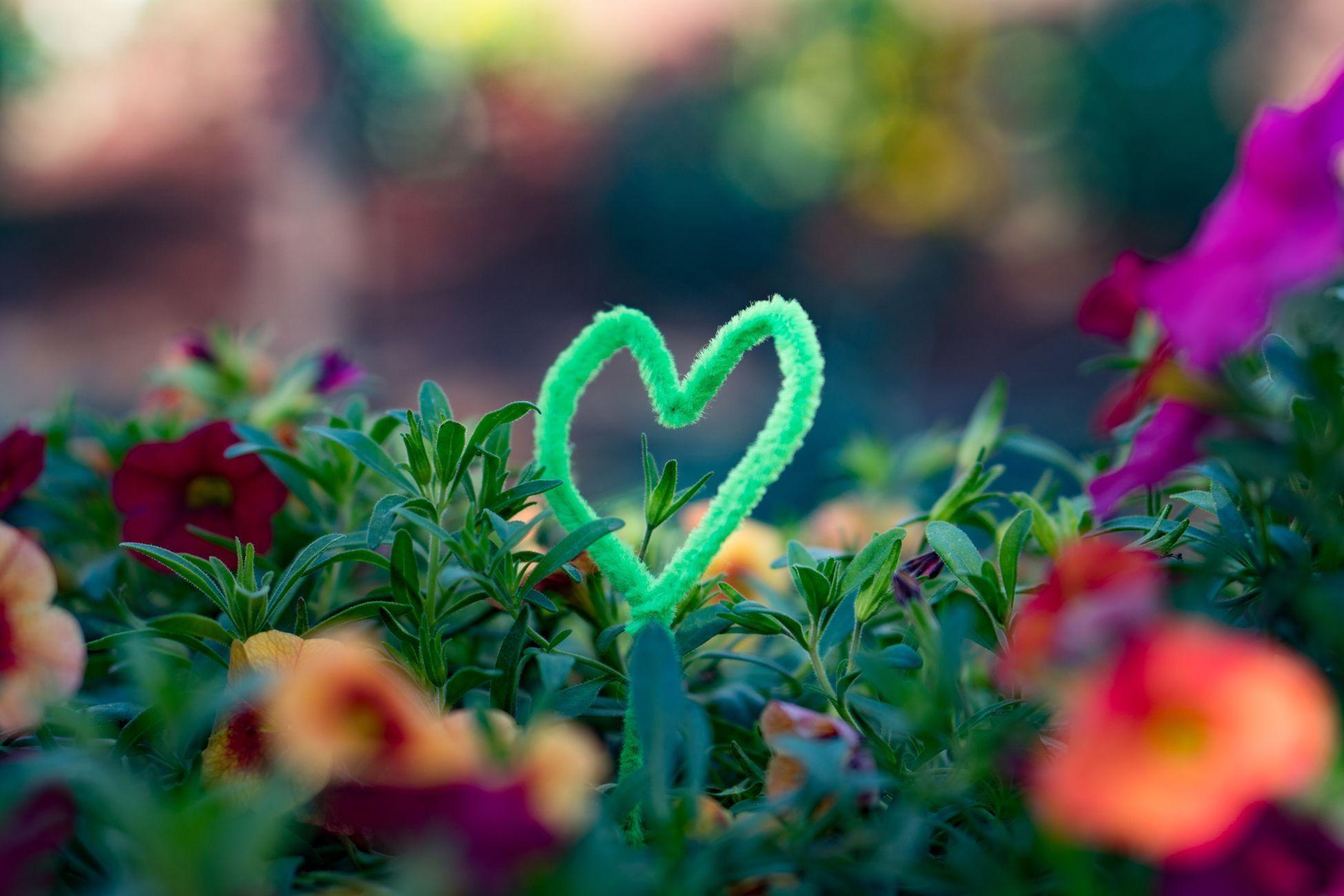 Amor-y-Vulnerabilidad